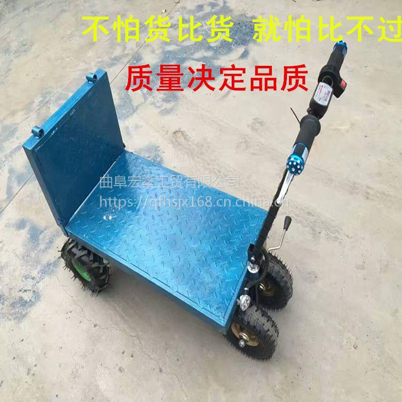 武乡县 小型搬运工具车 平板车电瓶手推车