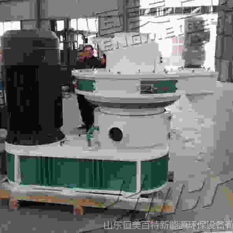 济南新能源稻壳颗粒机 木材颗粒机生产线
