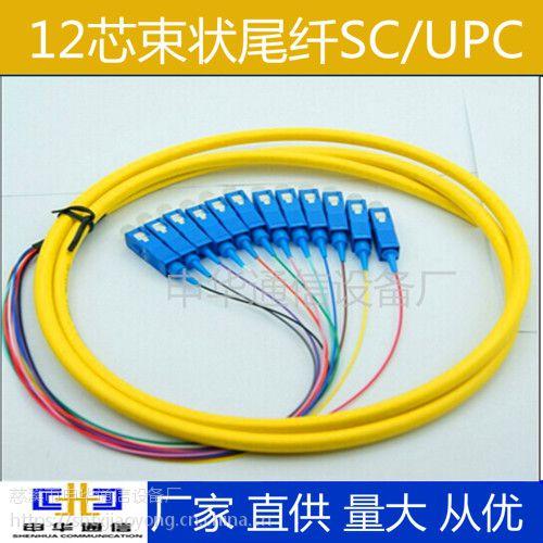 12芯束状尾纤SC/APC SC/UPC