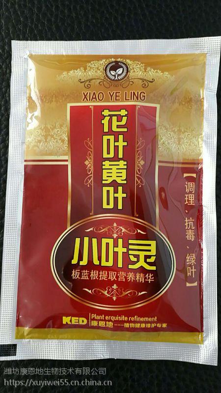 供应 得海龙 姜卷叶 生理性 小叶灵 60g*240袋/箱
