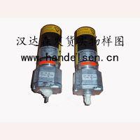 专业销售美国GROSCHOPP交流电机/直流电机/转速:4-685rpm