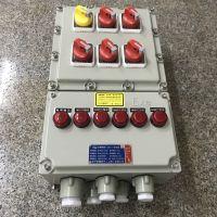 RAL7035防爆照明动力配电箱 BXM(D)51-12/16K100 IP54