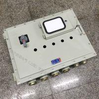 防爆仪表配电箱 300×400防爆电表箱 IP54/IP65