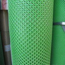 育雏养殖网 鸡鸭养殖网 宠物塑料平网