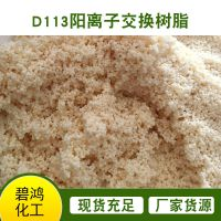 D113水处理离子交换树脂 弱酸离子交换树脂 大孔离子交换树脂