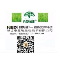 潍坊康恩地生物技术有限公司