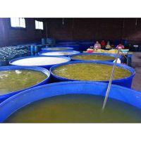 汉川莲藕腌制加工食品桶 泡藕清洗桶 2吨塑料圆桶