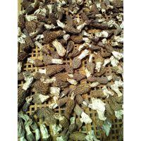 陕西汉中野生羊肚菌阳雀菌