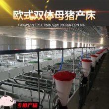 欧式母猪产床猪用产床连体欧式产床定做整体热镀锌欧式产床进出口母猪产床猪场用设备