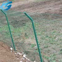 绿色铁网围栏 桃园用绿色防护网