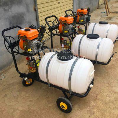 普航 汽油喷雾喷药机 推车式农田玉米打药机 200升打药机价格