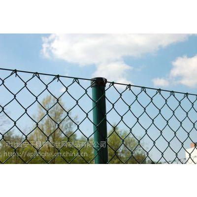 竞和勾花网厂家 现货 PE/PVC 涂塑勾花网 菱形网
