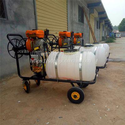 普航高效防虫害喷雾机 手推汽油打药机 200升柴油打药机价格