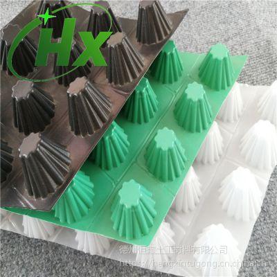 园林绿化2公分HDPE排水板恒鑫厂家供应