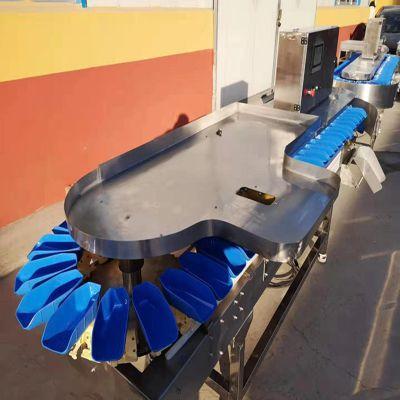 厂家直供乳山牡蛎重量分选机 牡蛎分级机
